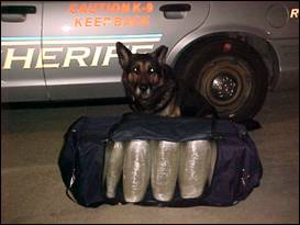 Fritz with confiscated drugs